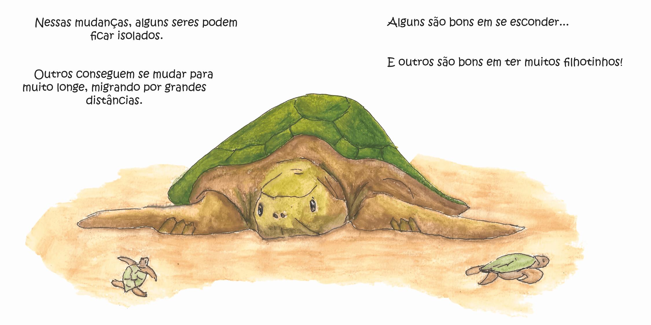 pagina-aberta-tartaruga.png